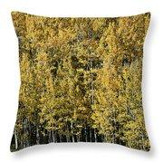 Aspen All Around Throw Pillow