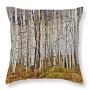 Aspen And Ferns Throw Pillow