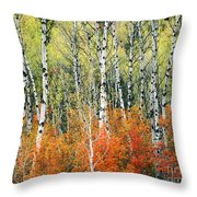 Aspen And Maple Trees In Autumn Throw Pillow