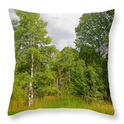 Aspen And Others Throw Pillow