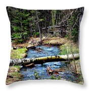 Aspen Crossing Mountain Stream Throw Pillow