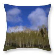 Aspen Dream Throw Pillow