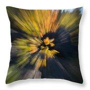 Aspen Explosion Throw Pillow
