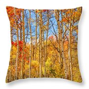 Aspen Fall Foliage Portrait Red Gold And Yellow  Throw Pillow