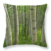Aspen Forest In Spring Throw Pillow
