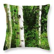 Aspen Grove 2 Throw Pillow
