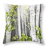 Aspen Grove Throw Pillow by Elena Elisseeva