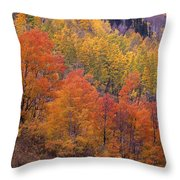 Aspen Grove In Fall Colors Throw Pillow