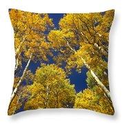 Aspen Grove In Fall Throw Pillow