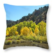 Aspen Grove In The Fall Throw Pillow