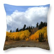 Aspen Hillside Throw Pillow