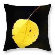 Aspen Leaf  In Fall Throw Pillow