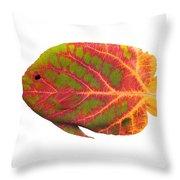 Aspen Leaf Tropical Fish 1 Throw Pillow