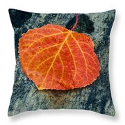 Aspen Leaf  Throw Pillow