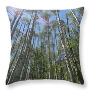 Aspen Light Throw Pillow