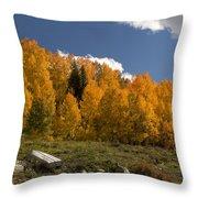 Aspen On The Road To Telluride Dsc07397 Throw Pillow