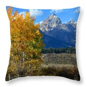 Aspen Peaks Throw Pillow