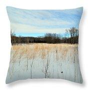 Aspen Prairie 2 Throw Pillow