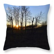 Aspen Prairie Sunset Throw Pillow