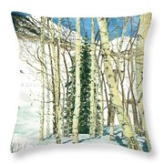 Aspen Shelter Throw Pillow