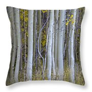 Aspen Stand Throw Pillow