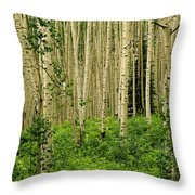 Aspen Summer Throw Pillow