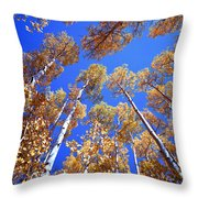 Aspen Tree Tops Throw Pillow