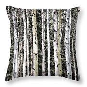Aspen Tree Trunks Throw Pillow