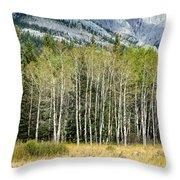 Aspen Trees Along The Bow Valley Throw Pillow