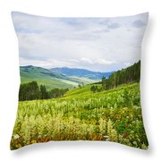Aspen Trees And Wildflowers Throw Pillow