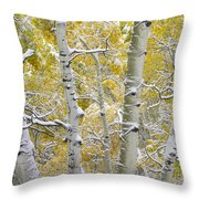 Aspen Trees Covered With Snow Throw Pillow