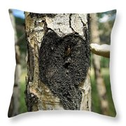 Aspen Trees Dying In Colorado Throw Pillow