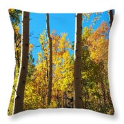 Aspen Trees In Fall Throw Pillow