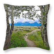 Aspen Trees On Trail To Jackson Lake At Willow Flats Overlook In Grand Teton National Park-wyoming  Throw Pillow