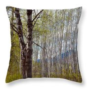 Aspen Trees Proudly Standing Throw Pillow by Omaste Witkowski