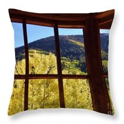 Aspen Window 2 Throw Pillow