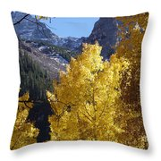 Aspen Window Throw Pillow