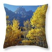 1m9356-v-aspens And The Grand Teton Throw Pillow