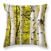 Aspens Throw Pillow by Chad Dutson