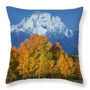 Aspens Fall Mount Moran Grand Tetons National Park Wyoming Throw Pillow
