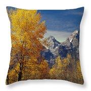 1m9353-aspens In Autumn And The Teton Range - V Throw Pillow