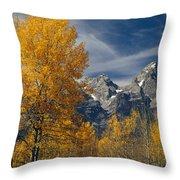 1m9352-aspens In Autumn And The Teton Range Throw Pillow