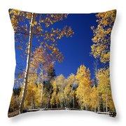 Aspens In Fall - V Throw Pillow