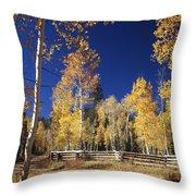 Aspens In Fall Throw Pillow