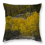 Aspens In Snow Throw Pillow