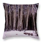 Aspens In Snow Throw Pillow