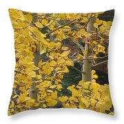 Aspens In The Fall 1 Throw Pillow