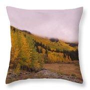 Aspens In The Mist Throw Pillow