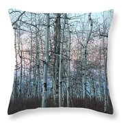 Aspens In Twilight Throw Pillow
