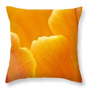 Aspiration Throw Pillow